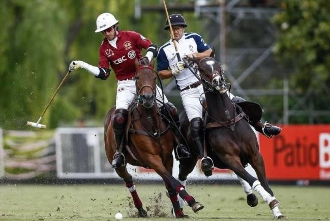 Handicap Havoc Inside Polo by Ron Allen
