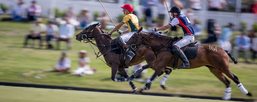 world polo championships usa australia