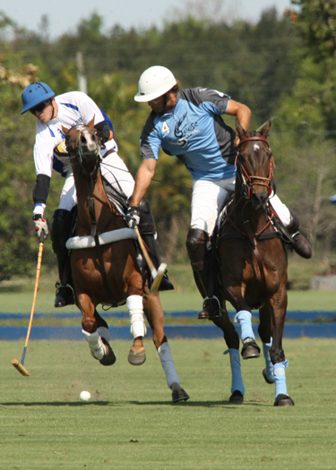 polo photography alex pacecho polo magazinepolo team polo club polo tournament 2